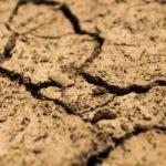 Verursachungsvermutung bei Bodenverunreinigungen