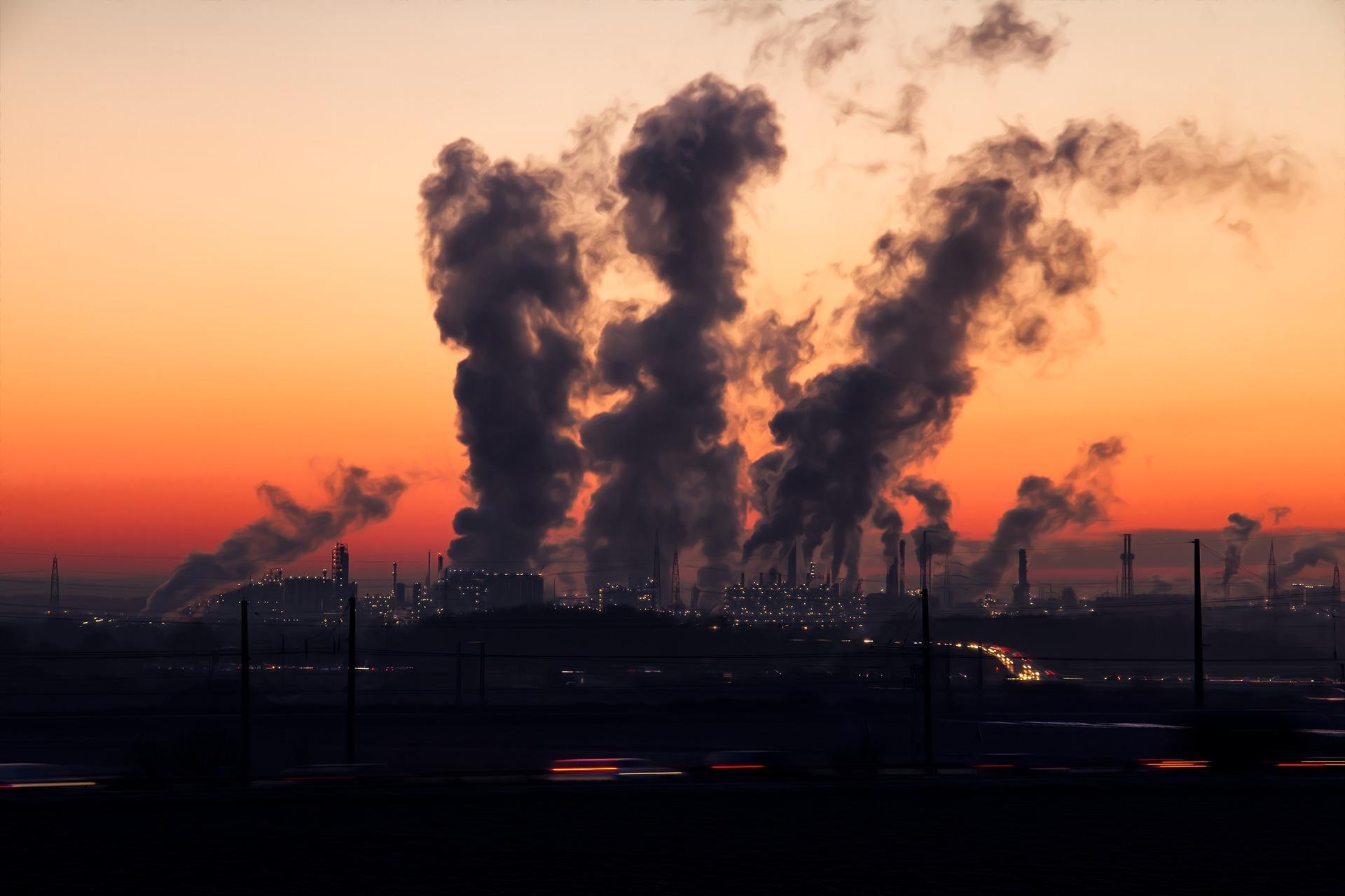 Das Kohlekraftwerk und das FFH-Gebiet