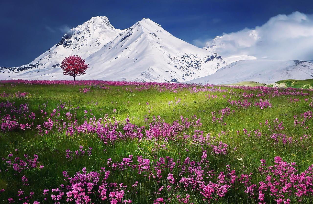 Schöne Aussichten im Siebengebirge