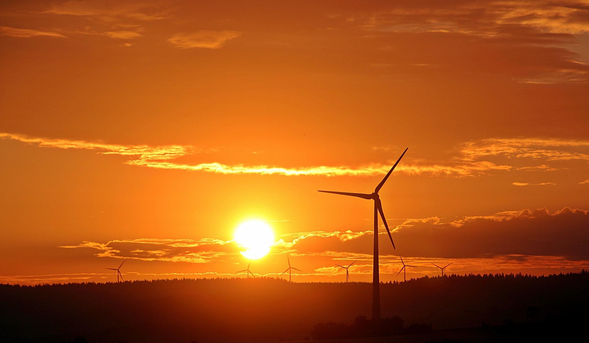 Pkw-Energieverbrauchskennzeichnungsverordnung